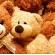 33 факта о мишках Тедди, о которых вы могли не знать