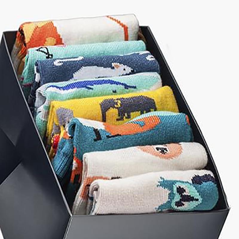 Набір чоловічих шкарпеток Safari Style