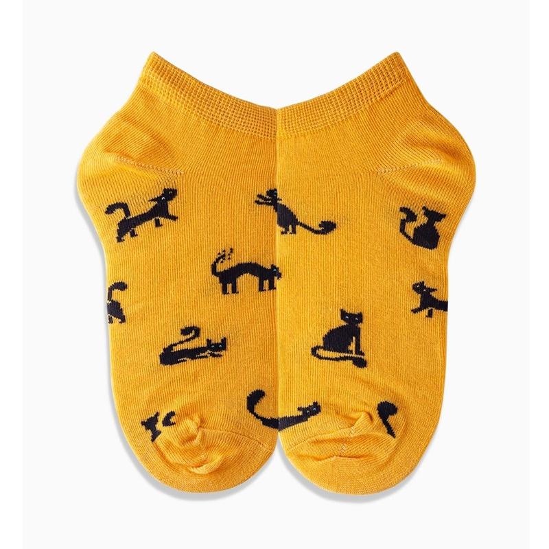 Набор мужских носков Cat vs Dog