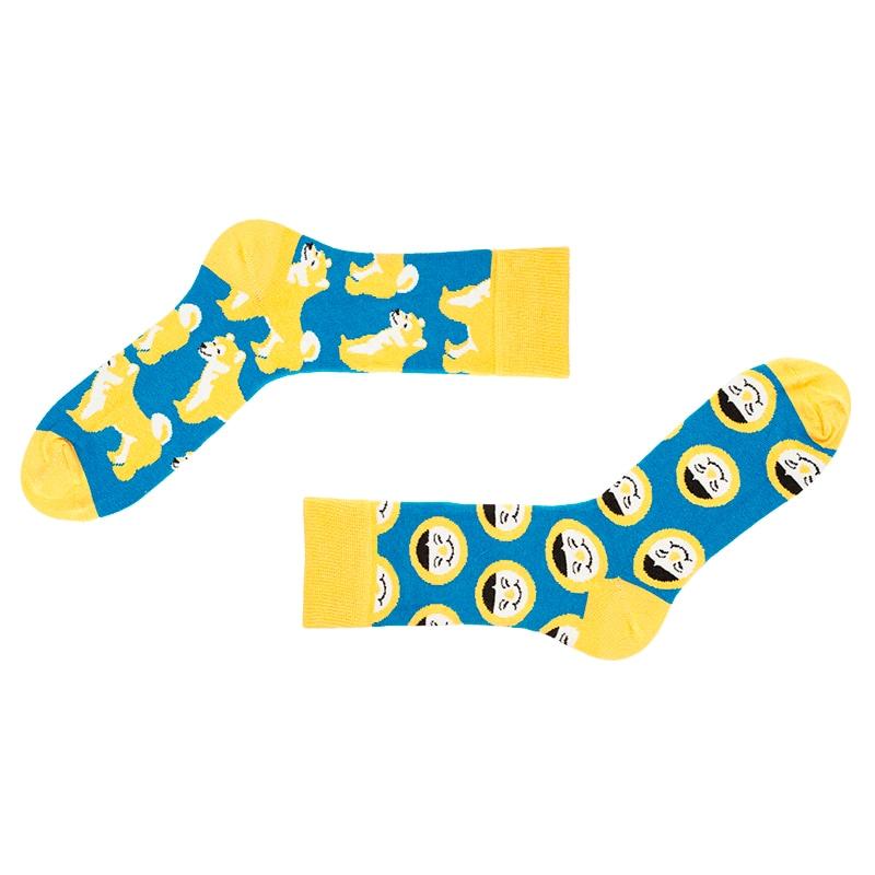 Набор мужских носков в подарок Alaska
