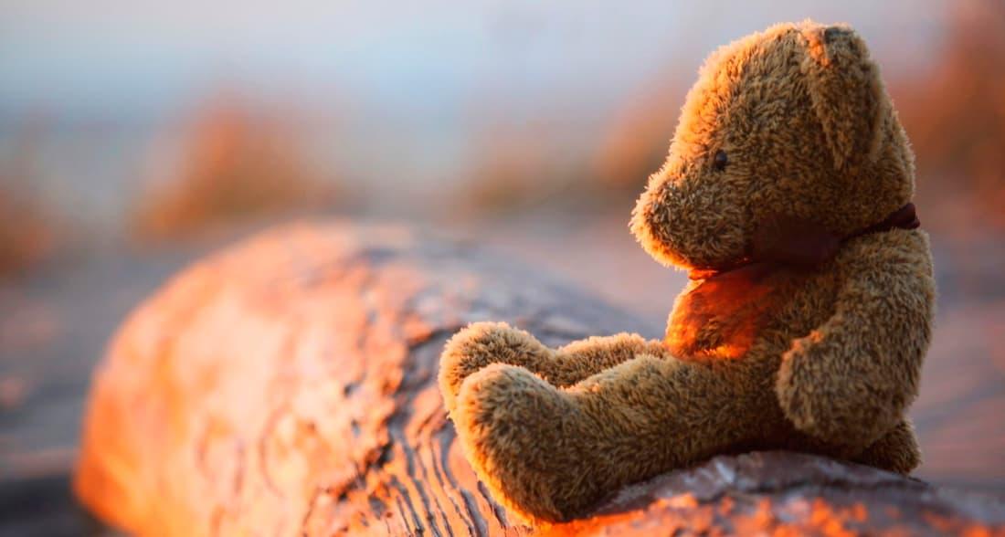 Cute Teddy Day Images HD Whatsapp Pics   Shayari